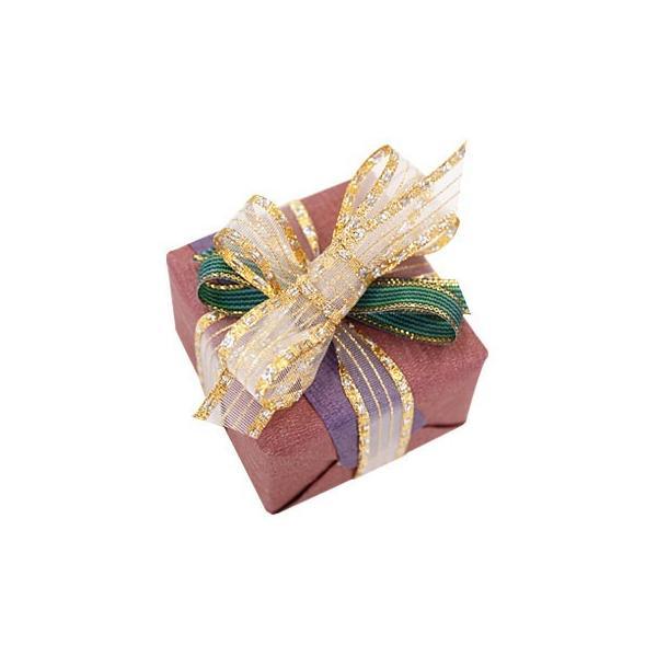 プレゼント用 ラッピング 有料ギフトラッピング 赤紫系 母の日