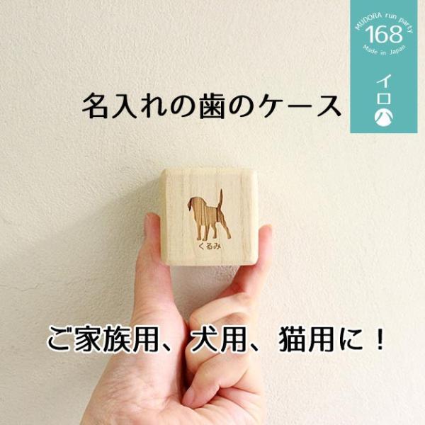 定形外選択で送料無料 乳歯ケース 「名入れ専用 イロハ 」(高品質桐材) 歯の箱 乳歯入れ 犬 猫  親知らず|atsumeru