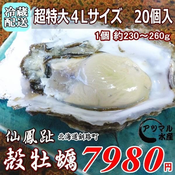 レア3年物/特大4L 20個/北海道・活牡蠣(カキ)(殻付き 生食)牡蠣・厚岸西岸 仙鳳趾/牡蛎 殿牡蠣