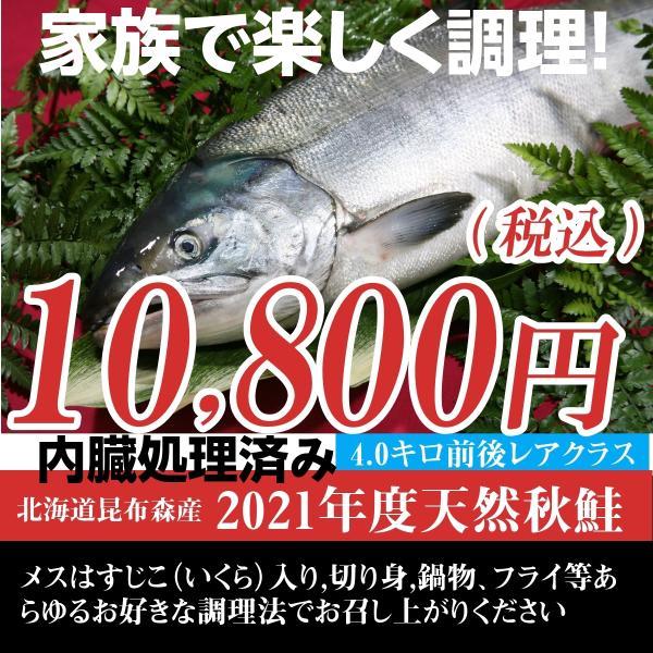 北海道(鮭) 秋鮭 メス 生筋子 4.0キロ前後 生鮭新鮮発送/内臓処理