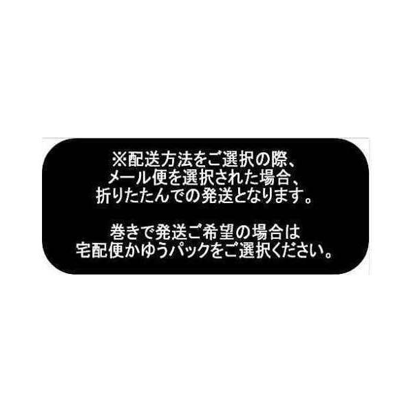 LIG-10520【ラミネート】ビンテージアメリカンナンバープレートラミネート加工(つや消し)◆◆(数量×50cm)【C2-6】U1.5 M1|avail-komadori|06