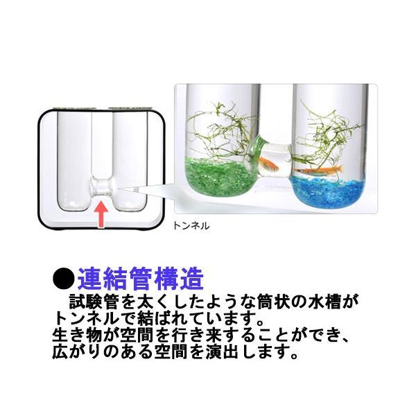 カミハタ グラスアクアリウム ジェメリ ホワイト|avaler|02