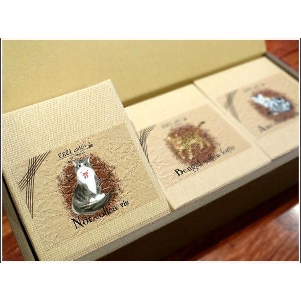 cecicafe ねこデザインドリップバッグコーヒーギフトセット10g×5袋3箱入り avylife 02