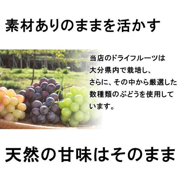 国産ドライフルーツ 無添加 安心院干しぶどう いろいろミックス 35g レーズン 葡萄 ブドウ 砂糖不使用 メール便 送料無料|awajikodawari|03