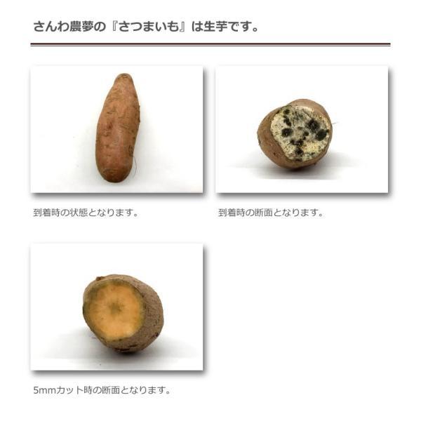さつまいも 紅はるか 夢の芋 500g 袋詰め×4袋 (2kg) さんわ農夢 香川県 サツマイモ 蜜芋 みつ芋 生芋 熟成芋 送料込 ネプリーグ|awajikodawari|03