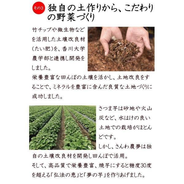 さつまいも 紅はるか 夢の芋 500g 袋詰め×4袋 (2kg) さんわ農夢 香川県 サツマイモ 蜜芋 みつ芋 生芋 熟成芋 送料込 ネプリーグ|awajikodawari|08