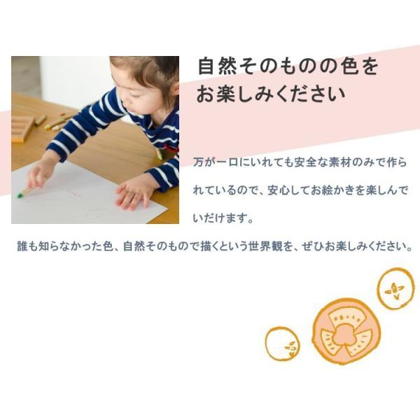 クレヨン 安全 子供 食べても大丈夫 おやさいクレヨン Standard 10色 mizuiro プレゼント 誕生日 二歳 三歳 四歳 入園 入学 ラッピング 送料無料|awajikodawari|09