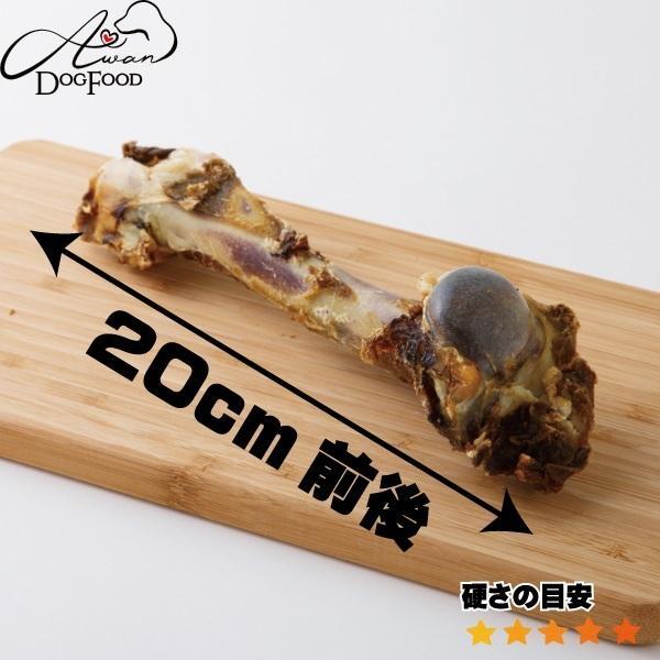 鹿の骨(大) (鹿 デンタルケア 骨 犬のおやつ 熊本県 国産 エーワン ベニソン)|awan|03