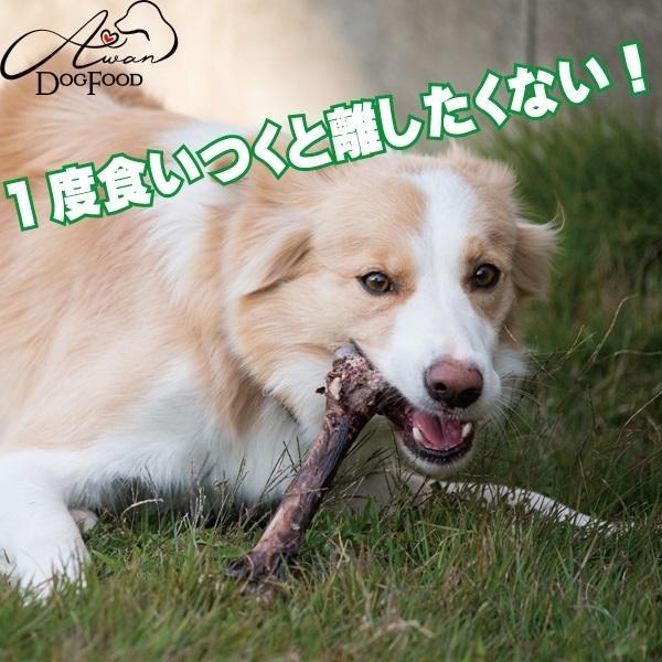 鹿の骨(大) (鹿 デンタルケア 骨 犬のおやつ 熊本県 国産 エーワン ベニソン)|awan|04