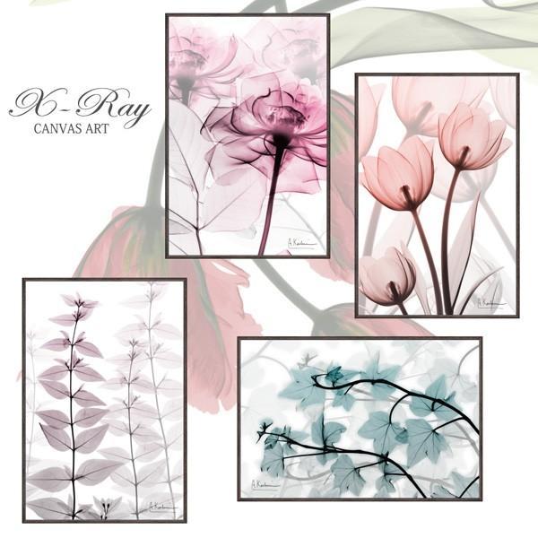 レントゲンアート X RAY キャンバスアート「ピンクローズ(Sサイズ)」 インテリア 額入り ポスター モノトーン アートパネル リビング 玄関 プレゼント バラ|ayuwara|05
