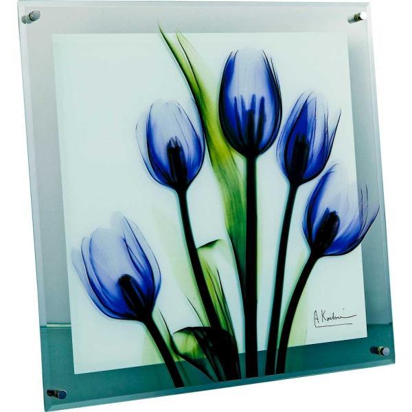 レントゲンアート X RAY ガラス アート「チューリップ イマジン(Mサイズ)」/絵画 壁掛け 壁飾り インテリア|ayuwara