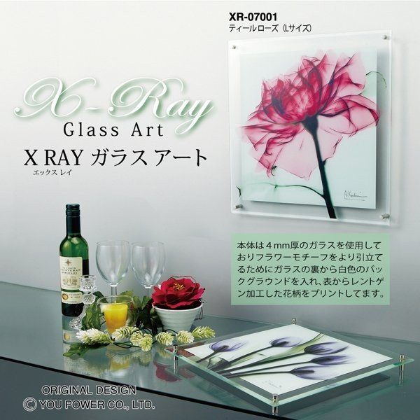 【レントゲンアート】X RAY ガラス アート「アスペン フォール(Mサイズ)」|ayuwara|04