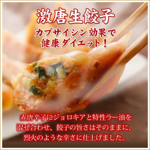 (激唐生餃子50個入り) 10人前 冷凍餃子  生餃子 餃子 ぎょうざ ギョーザ ギョウザ 冷凍生餃子 お取り寄せ セット 冷凍食品 グルメ