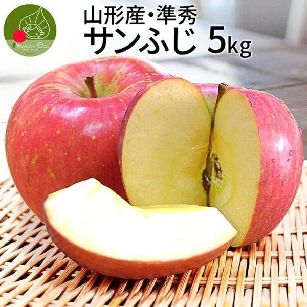 りんご 準秀品 5kg サンふじ 送料無料 山形県産 訳ありより良いリンゴ ご家庭用 (遠方送料加算)