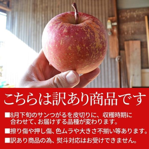 りんご 訳あり 10kg 果物 ふじ 送料無料 山形県産 産地直送 リンゴ サンふじ ご家庭用|azimiya|02
