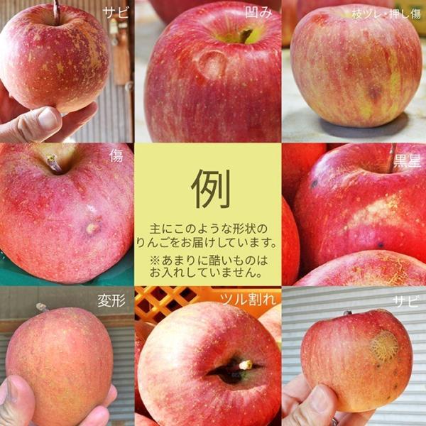 りんご 訳あり 10kg 果物 ふじ 送料無料 山形県産 産地直送 リンゴ サンふじ ご家庭用|azimiya|04