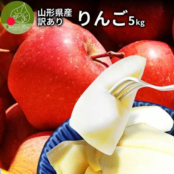 りんご 訳あり 5kg ふじ  山形県産 送料無料(一部地域)家庭用 サンふじリンゴ 早生ふじ 産地直送  お取り寄せ