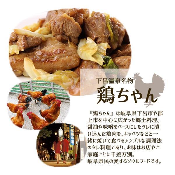 ギフト 奥美濃古地鶏 鶏ちゃんセット 5袋 けいちゃん ケイチャン 鶏肉 鳥肉 みそ 味噌 ミールキット レンチン|azusaya|04