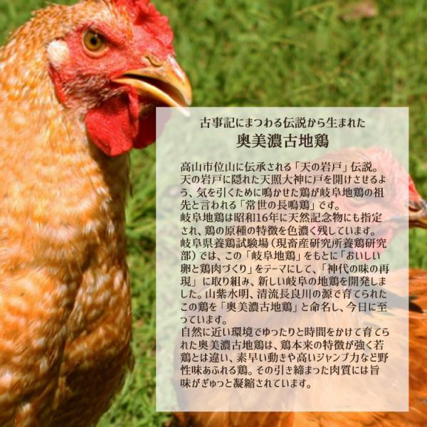 ギフト 奥美濃古地鶏 鍋セット 3人前 鶏肉 つみれ 塩麹スープ 高山ラーメン ミールキット レンチン|azusaya|04