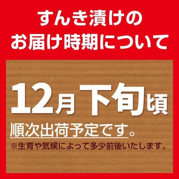 (2018年予約)冬季限定 信州木曽伝統の味 すんき(200g×2袋)/木曽赤かぶ 無塩 すんき漬け //|azusaya|04
