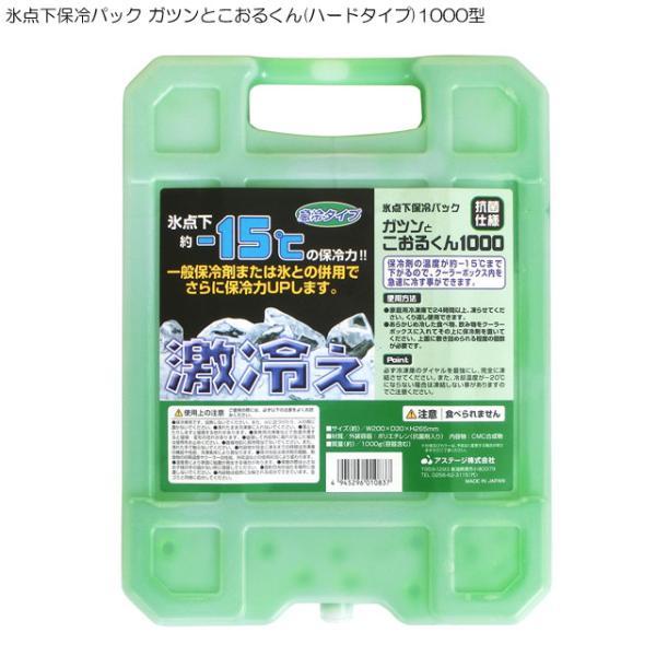 氷点下保冷パック ガツンとこおるくん(ハードタイプ)1000型