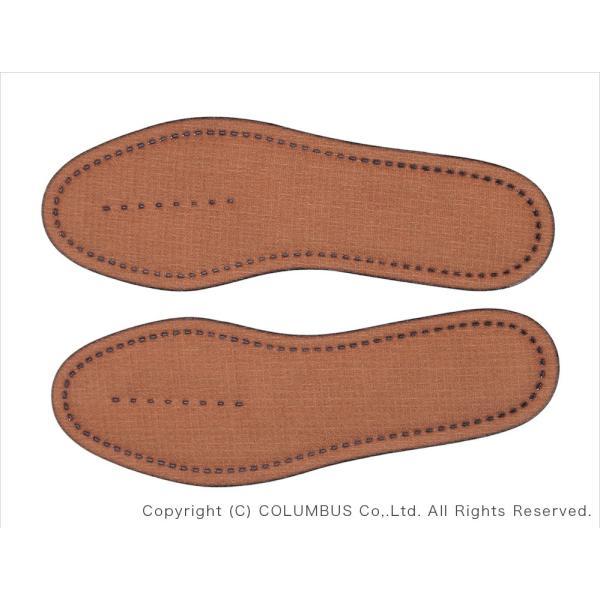 靴 中敷き 消臭 抗菌 コロンブス COLUMBUS 活性炭インソール 1足分(2枚入り)
