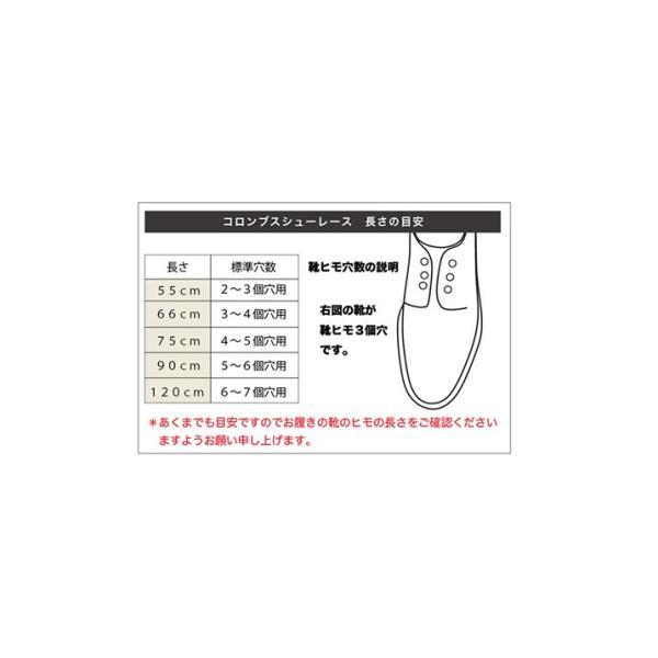 靴ひも コロンブス COLUMBUS シューレース ガス平 (66 / 75cm) 1足分(2本入り)