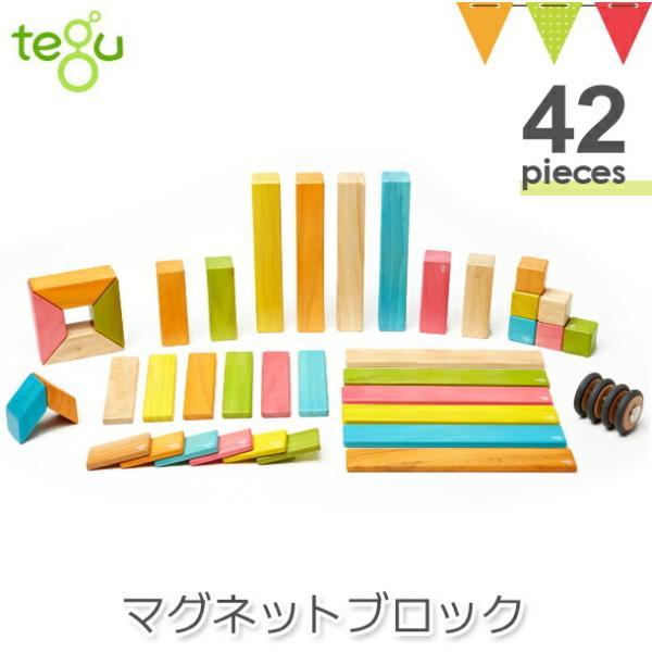 tegu(テグ) マグネットブロック ティント42P