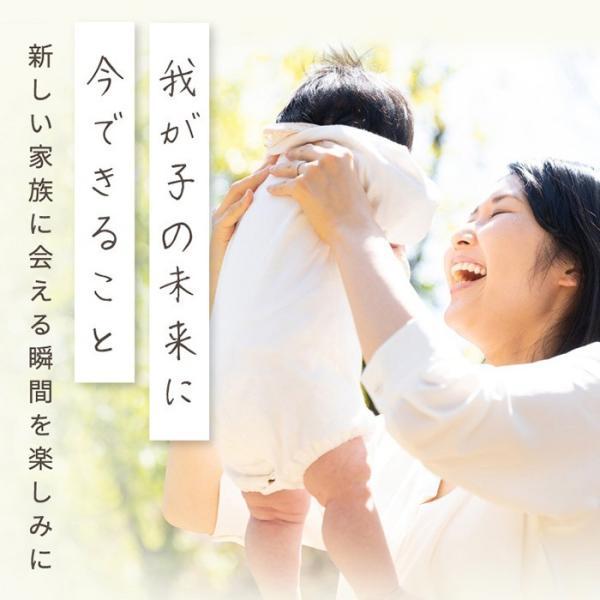葉酸サプリ サプリメント / アロベビー 葉酸 サプリ 妊活 妊活中 鉄 DHA 男性 女性 妊娠 授乳 産後|babycresco|19