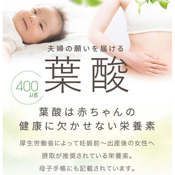葉酸サプリ サプリメント / アロベビー 葉酸 サプリ 妊活 妊活中 鉄 DHA 男性 女性 妊娠 授乳 産後|babycresco|07
