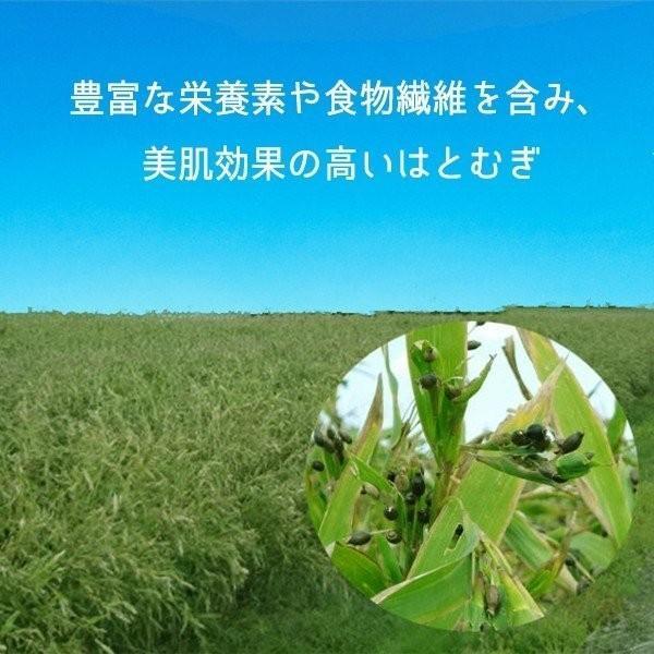 国産 はと麦を100%使用:国産はと麦茶 8g×20P 煮出し 無添加/無着色|bakuchanhonpo|02