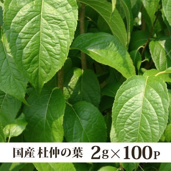 杜仲茶 国産 健康茶 2g×100p バク盛り(メール便送料無料・代引き不可)