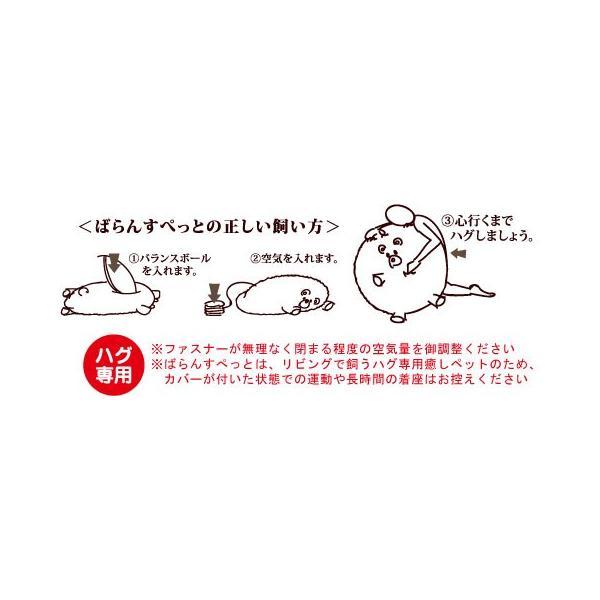 ばらんすぱん(パンダ)|balancepets|02