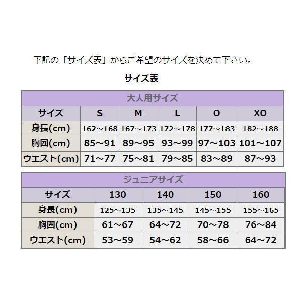 野球ユニフォームオーダー:昇華マーキング/1つボタンセカンダリーシャツ/プロスター【P-01】初回5着〜|ballpark-withus|02