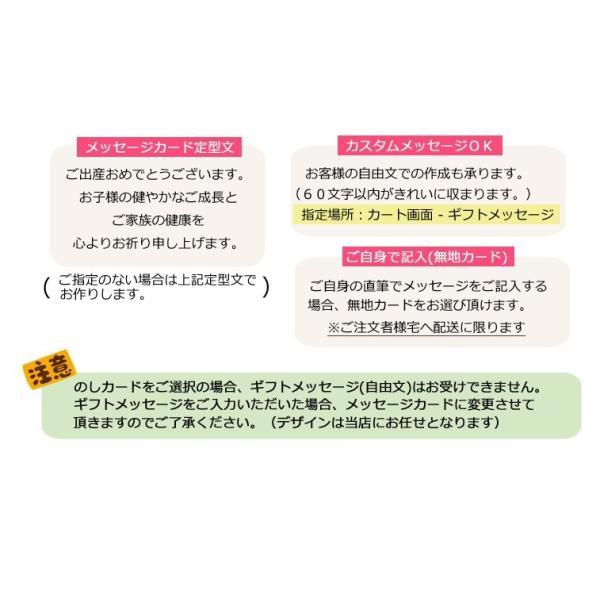 出産祝い 名入れ おむつケーキ ミキハウス 男女 ガーゼタオル マルチケット 3段|bambinoeshop|10
