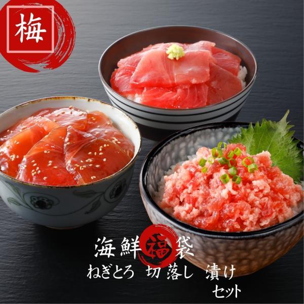 (送料無料)海鮮福袋「梅」 鮪3種入り 食べ比べ 寿司  マグロ ねぎとろ 贈り物 豪華セット お中元 海鮮 ギフト