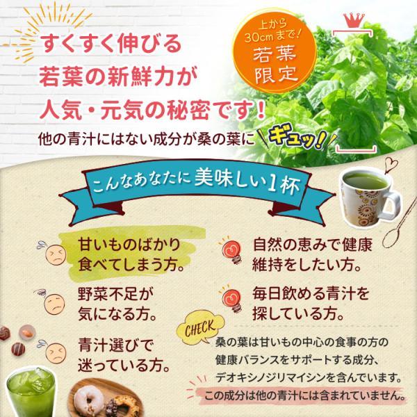 桑の葉茶 若葉 粉末 1g×30包 青汁 熊本県産 国産 健康茶 桑の葉 桑茶 効能|bansyodo1|02