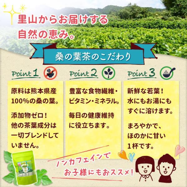 桑の葉茶 若葉 粉末 1g×30包 青汁 熊本県産 国産 健康茶 桑の葉 桑茶 効能|bansyodo1|03