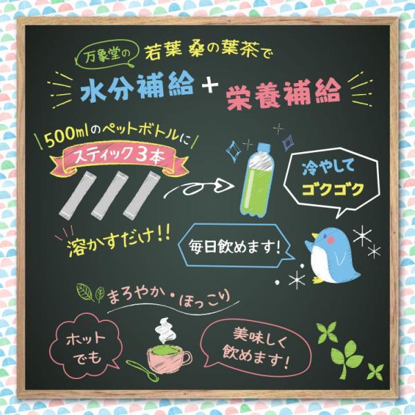 桑の葉茶 若葉 粉末 1g×30包 青汁 熊本県産 国産 健康茶 桑の葉 桑茶 効能|bansyodo1|04