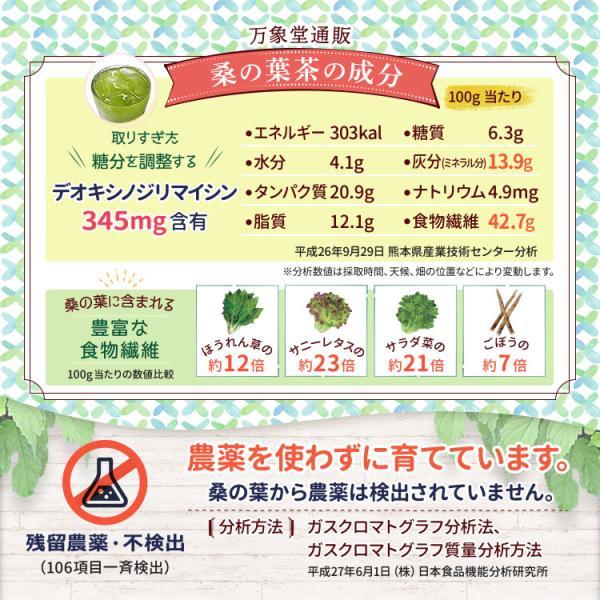 桑の葉茶 若葉 粉末 1g×30包 青汁 熊本県産 国産 健康茶 桑の葉 桑茶 効能|bansyodo1|06
