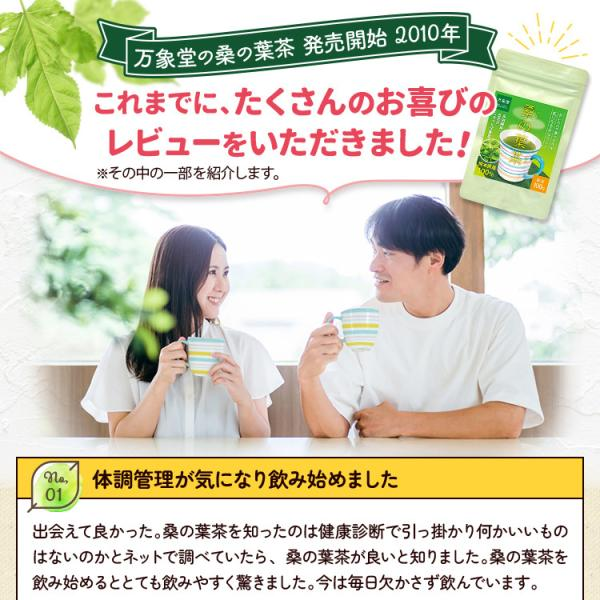 桑の葉茶 粉末 100g 青汁 国産 (熊本県産) 効能 桑茶 パウダー|bansyodo1|11