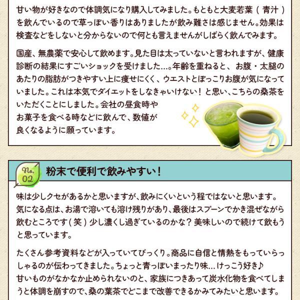 桑の葉茶 粉末 100g 青汁 国産 (熊本県産) 効能 桑茶 パウダー|bansyodo1|12