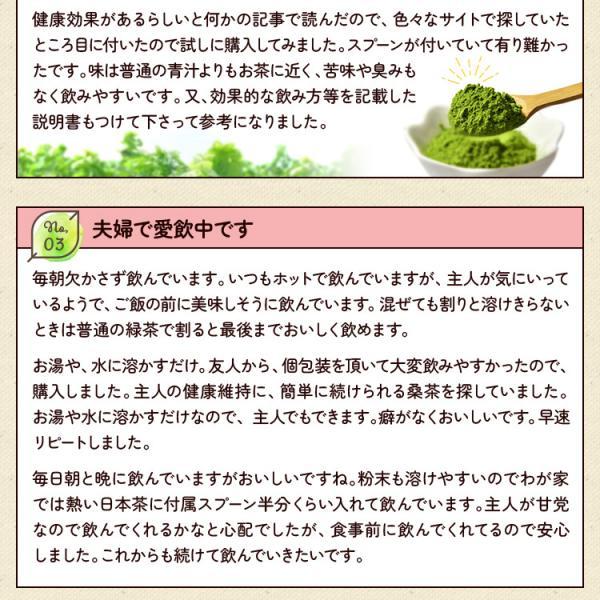 桑の葉茶 粉末 100g 青汁 国産 (熊本県産) 効能 桑茶 パウダー|bansyodo1|13