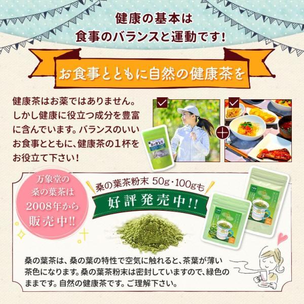 桑の葉茶 粉末 100g 青汁 国産 (熊本県産) 効能 桑茶 パウダー|bansyodo1|15