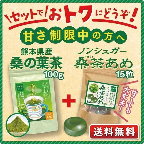 桑の葉茶 粉末 100g 青汁 国産  送料無料  糖質 くわの葉茶 桑茶 パウダー|bansyodo1|17
