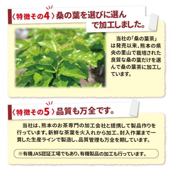 桑の葉茶 粉末 100g 青汁 国産 (熊本県産) 効能 桑茶 パウダー|bansyodo1|10