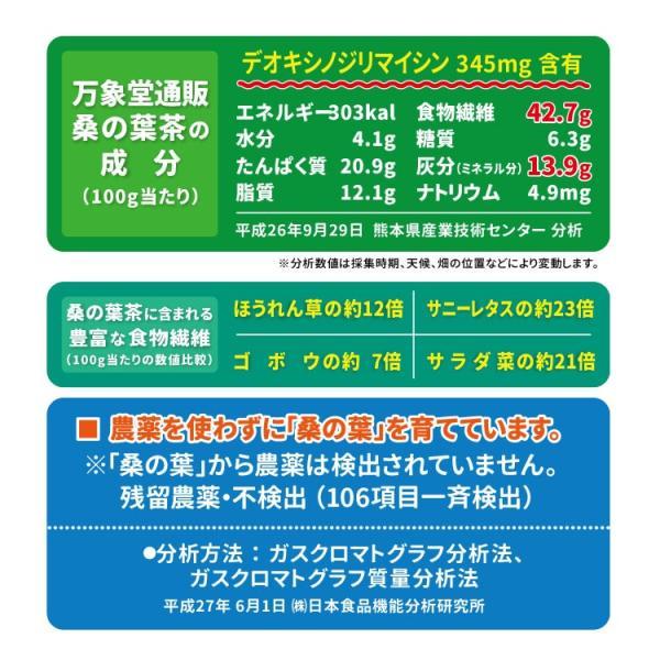 桑の葉茶 粉末 100g×3袋 青汁 熊本県産 国産 健康茶 桑の葉 桑茶 パウダー|bansyodo1|06