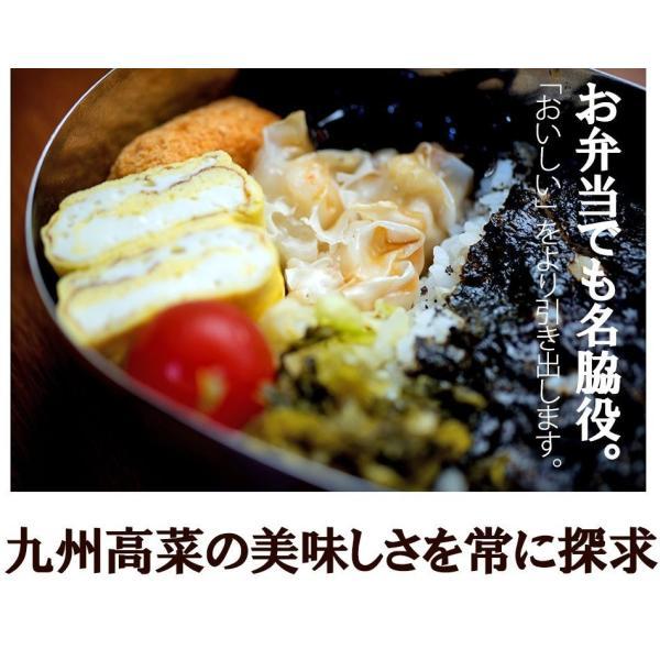 送料無料 九州高菜 150g×4袋 ご飯のお供 ふりかけ 得トクセール ポイント消化 食品 お試し 国産 ギフト お取り寄せ グルメ 高菜 漬物|banya|10
