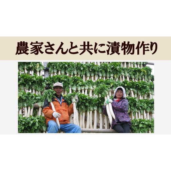 送料無料 九州高菜 150g×4袋 ご飯のお供 ふりかけ 得トクセール ポイント消化 食品 お試し 国産 ギフト お取り寄せ グルメ 高菜 漬物|banya|08
