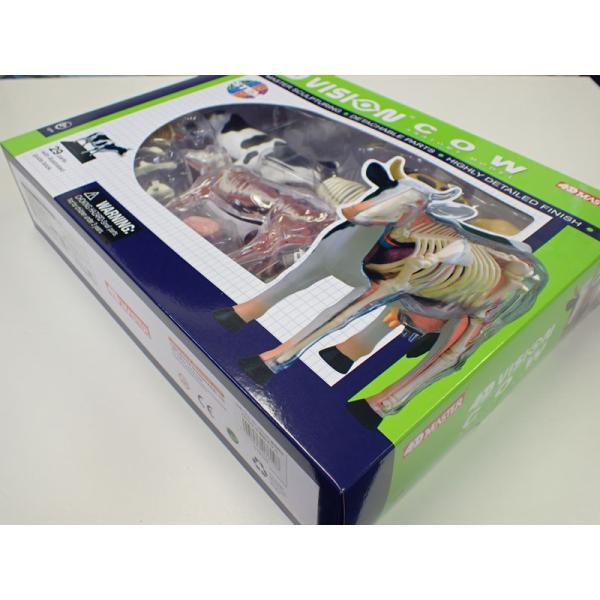 立体パズル 4D VISION 動物解剖 No.03 牛解剖モデル